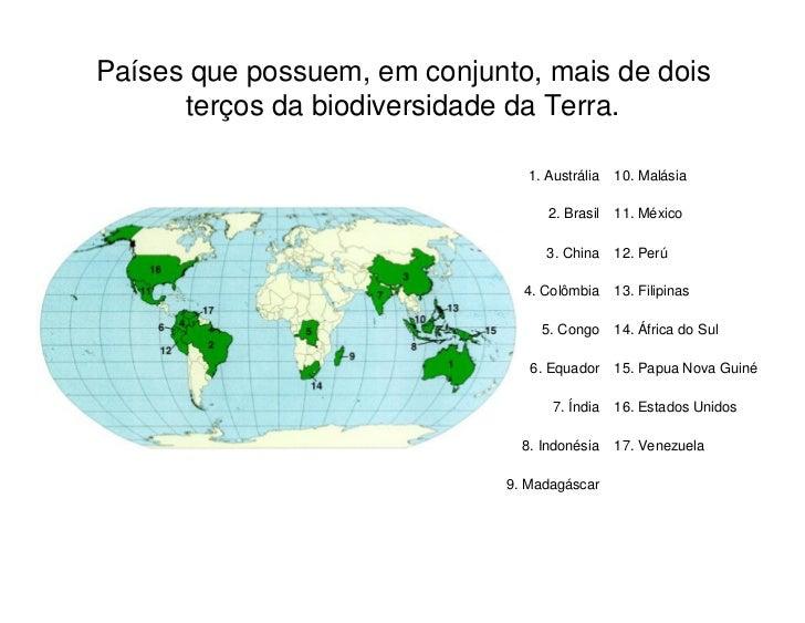 Factores responsáveis pela perda        de Biodiversidade Destruição ou degradação do habitat Fragmentação do habitat Sobr...