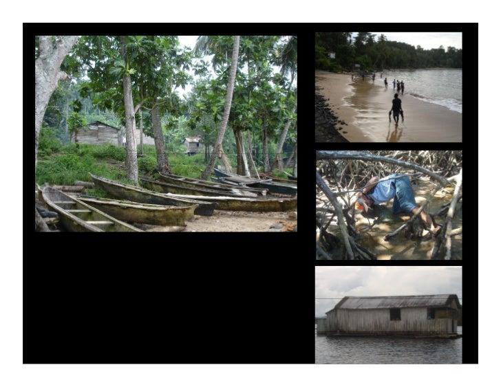 Reserva natural Área destinada à protecção de habitats da flora e fauna.