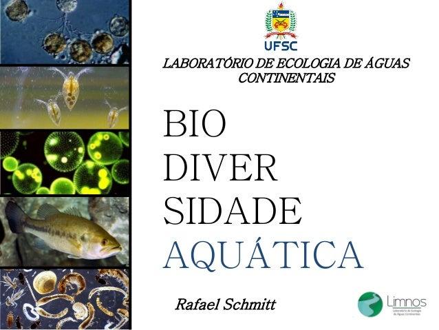 BIO DIVER SIDADE AQUÁTICA Rafael Schmitt LABORATÓRIO DE ECOLOGIA DE ÁGUAS CONTINENTAIS