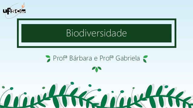Biodiversidade Profª Bárbara e Profª Gabriela 1