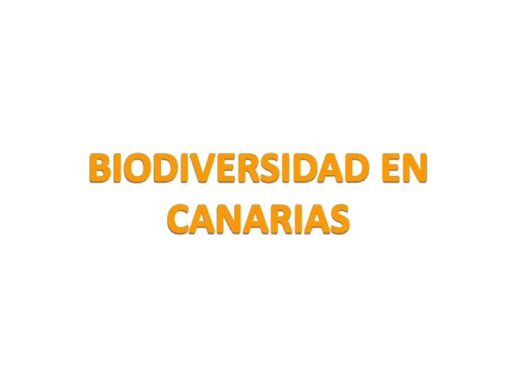 BIODIVERSIDAD EN CANARIAS<br />