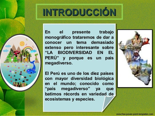 Biodiversidad en el Perú Slide 2