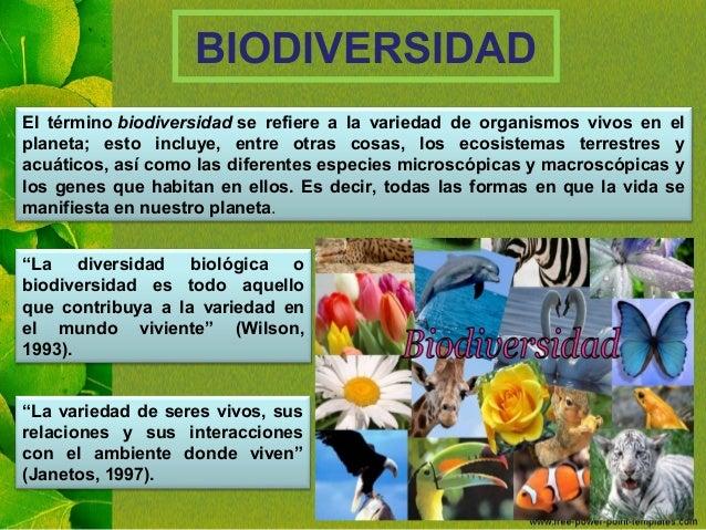 Biodiversidad en el Perú Slide 3