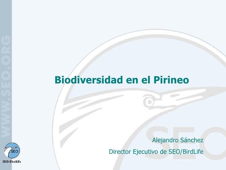 Biodiversidad en el Pirineo Alejandro Sánchez Director Ejecutivo de SEO/BirdLife