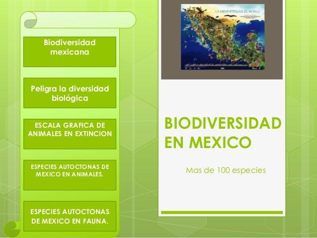 BIODIVERSIDAD EN MEXICO Mas de 100 especies Biodiversidad mexicana Peligra la diversidad biológica ESCALA GRAFICA DE ANIMA...