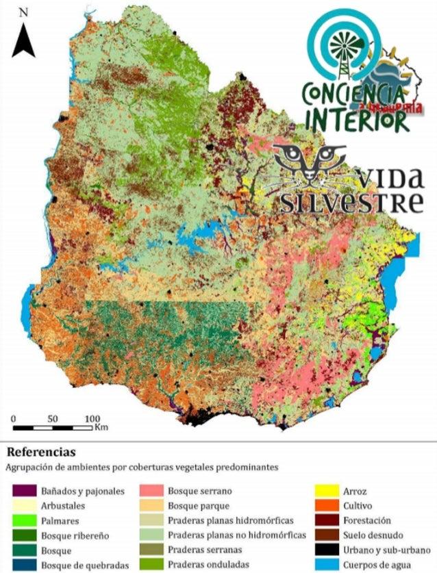 Ficha: Avances en el conocimiento de la biodiversidad terrestre de Uruguay Autores: Mariana Ríosa,b, Natalia Zaldúaa, Ceci...