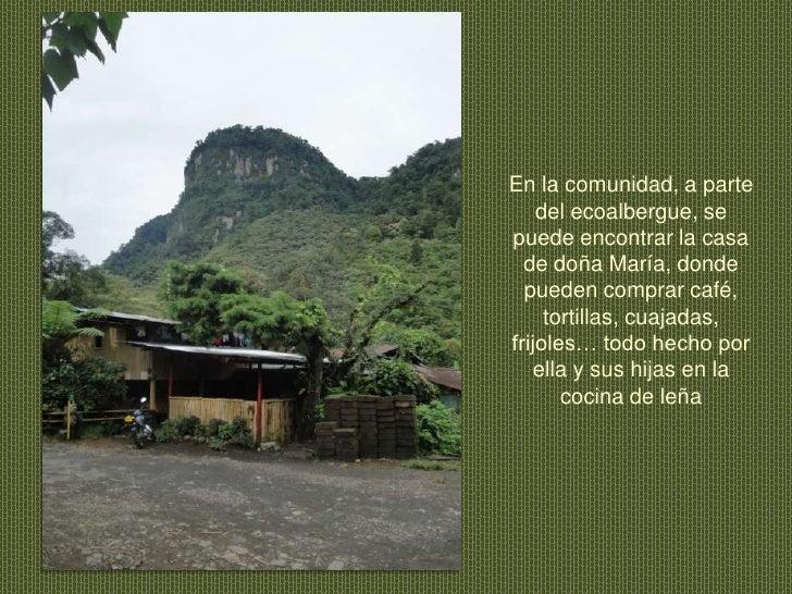 En la comunidad, a parte del ecoalbergue, se puede encontrar la casa de doña María, donde pueden comprar café, tortillas, ...