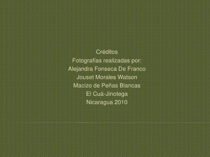 Créditos<br />Fotografías realizadas por:<br />Alejandra Fonseca De Franco<br />Jouset Morales Watson<br />Macizo de Peñas...