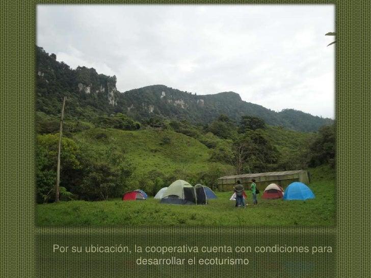 Por su ubicación, la cooperativa cuenta con condiciones para desarrollar el ecoturismo<br />