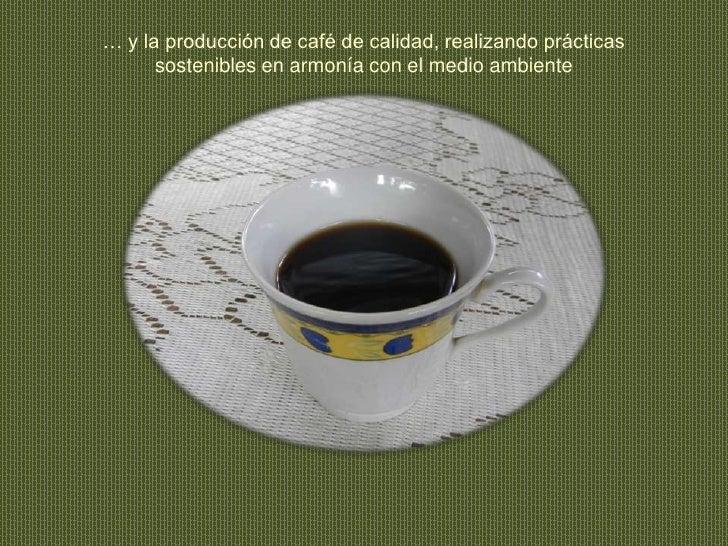 … y la producción de café de calidad, realizando prácticas sostenibles en armonía con el medio ambiente<br />