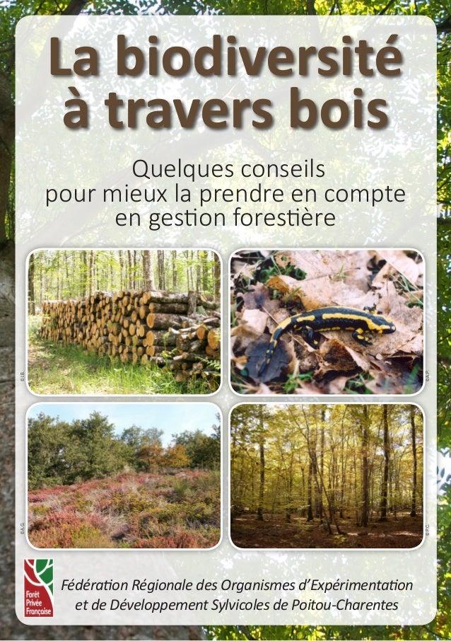 1 La biodiversité à travers bois Quelques conseils pour mieux la prendre en compte en gestion forestière Fédération Région...