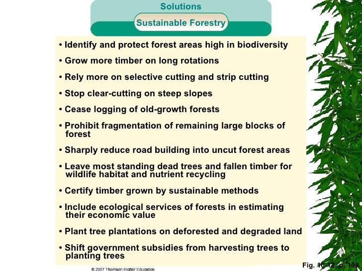 Forest advantages
