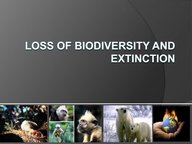 Loss of Biodiversity and Extinction<br />