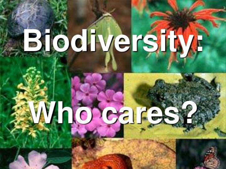 Biodiversity: Who cares?<br />
