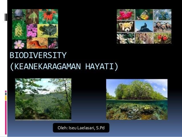 BIODIVERSITY(KEANEKARAGAMAN HAYATI)          Oleh: Iseu Laelasari, S.Pd
