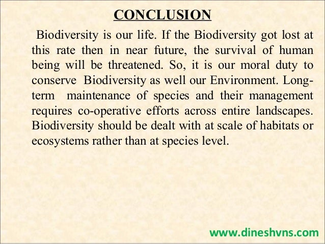 Biodiversity essay writing