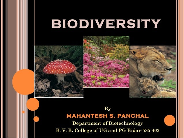 BIODIVERSIT Y  By  MAHANTESH S. PANCHAL Department of Biotechnology B. V. B. College of UG and PG Bidar-585 403