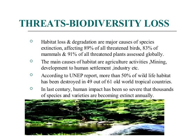 4) Consequences of biodiversity loss