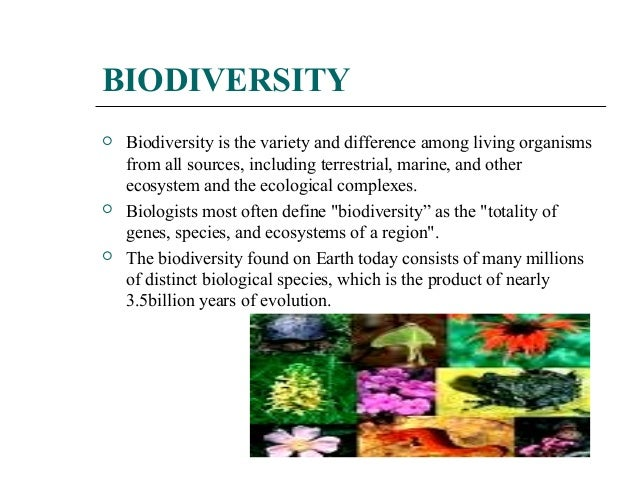 definition of biodiversity Biodiversity is the term used to describe the variety of life on earth across all of the different levels of biological organization biodiversity is often divided into three types, including species diversity, genetic diversity and ecological diversity.