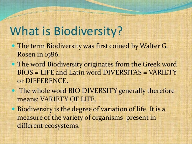 research paper on biodiversity Pollution, global warming, and the environment are a constant source of news this sample essay explores biodiversity and society's impact.