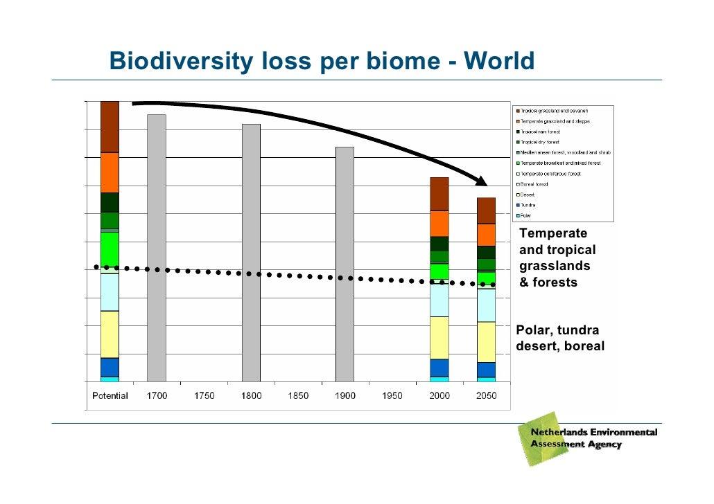 Biodiversity Loss in Thailand