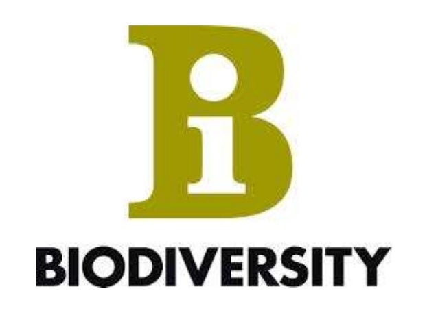 biodiversity coursework Healthy ecosystems provide crucial direct, indirect, and aesthetic-ethical benefits to humans.