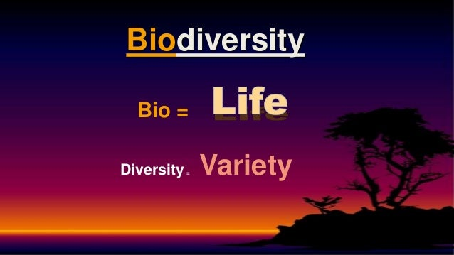diversity and its means Define diversity diversity synonyms, diversity pronunciation, diversity translation, english dictionary definition of diversity n pl di er i ies 1 a the quality or condition of being diverse: a band known for the diversity of its music b the condition of having or including.
