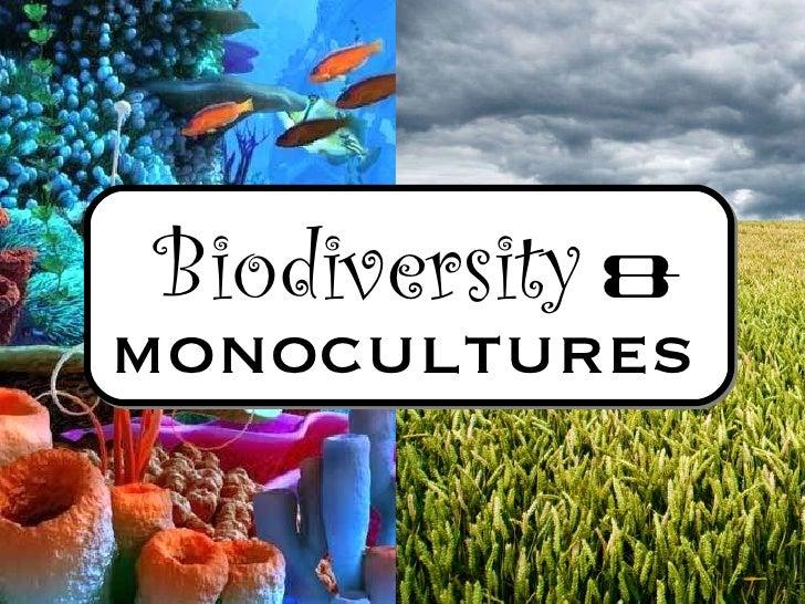 Biodiversity   &   monocultures