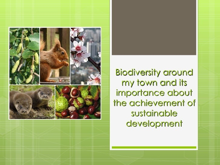 Biodiversity around my town and its importance about the achievement of sustainable development