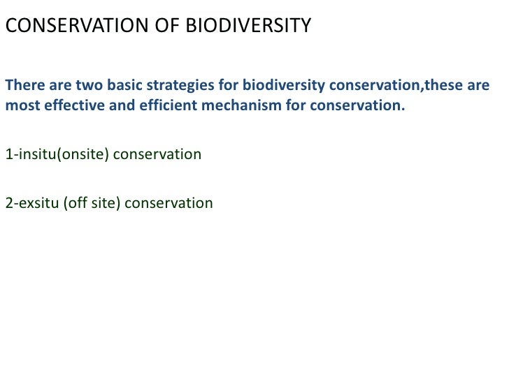 biodiversity notes Biodiversity is much more than a list of all the species in a particular area species: a group of organisms with.