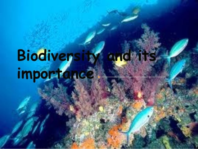 Biodiversity and its importance