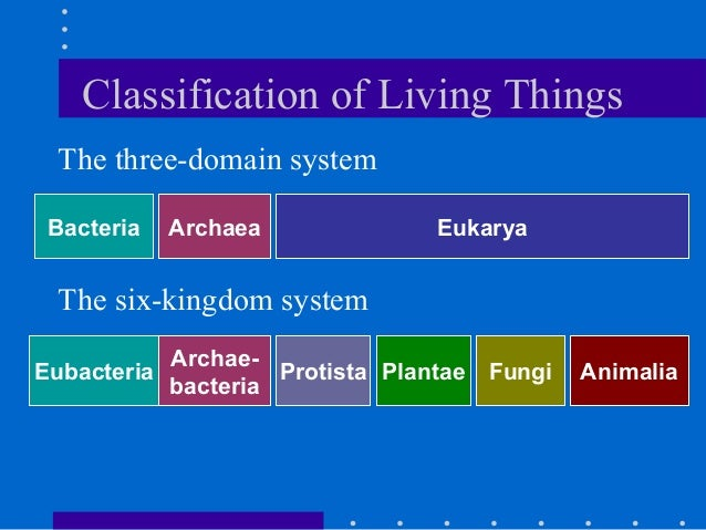 three domain system of classification The three-domain system is a way for classifying biological organisms this  classification system distinguishes between eukaryotic organisms, organisms  which.