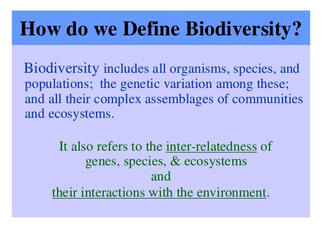 essay on conservation of ecology Rbf at 75—essays  conservation was a special interest of founding trustee  laurance s rockefeller, and it constituted much  from conservation to  ecology.