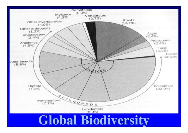 threats to biodiversity and conservation of Incentive measures for conservation of biodiversity and sustainability:  islands are the focus of significant conservation investment 21 direct threats to .