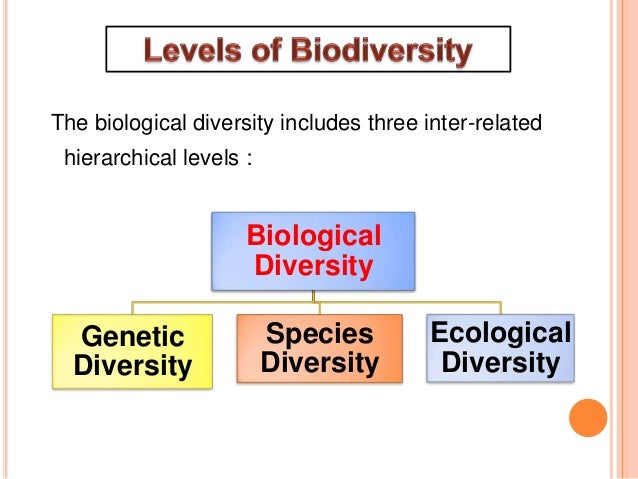value of biodiversity ppt  software