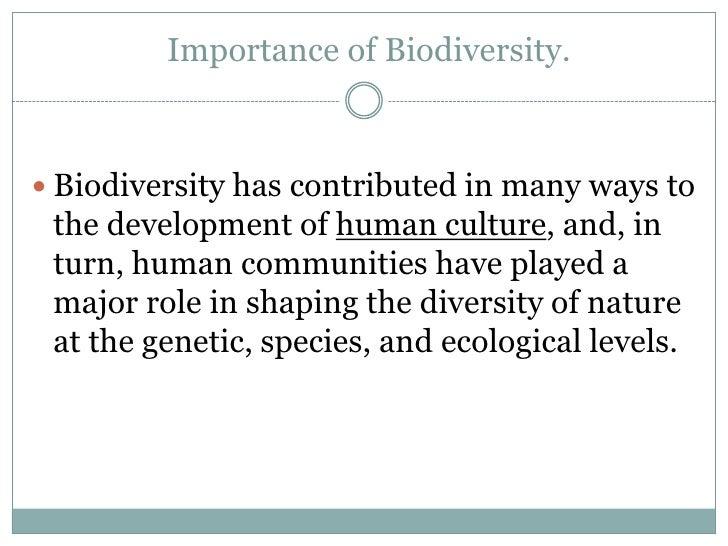 Biodiversity & conservation sai