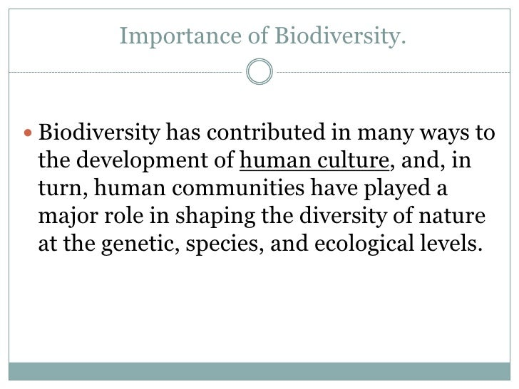 the importance of biodiversity Importance of diversity in the workplace and in educational institutions plays a crucial role in the overall development of a nation in this article, we shall know what is the importance of diversity and how it can be achieved.