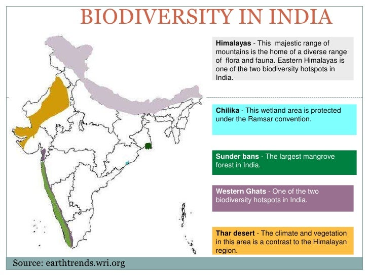conservation of biodiversity Biodiversity management: conservation, preservation and protection the conservation of biological diversity has become a global concern although not everybody .