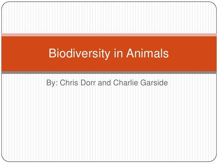 By: Chris Dorr and Charlie Garside<br />Biodiversity in Animals <br />