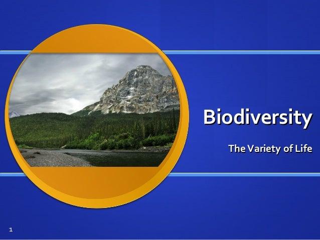 BiodiversityBiodiversity TheVariety of LifeTheVariety of Life 1
