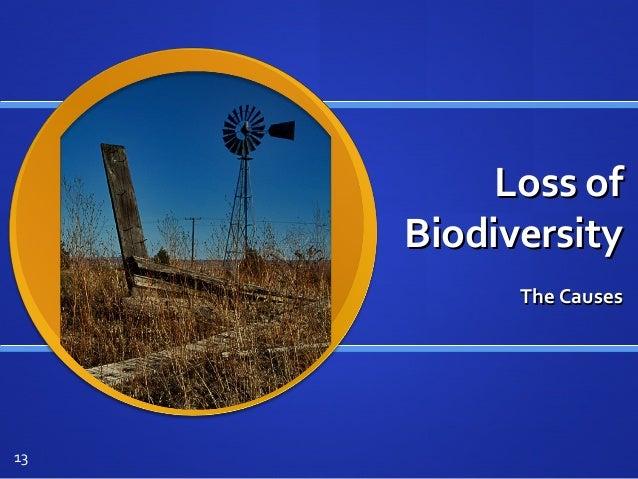 Loss ofLoss of BiodiversityBiodiversity The CausesThe Causes 13
