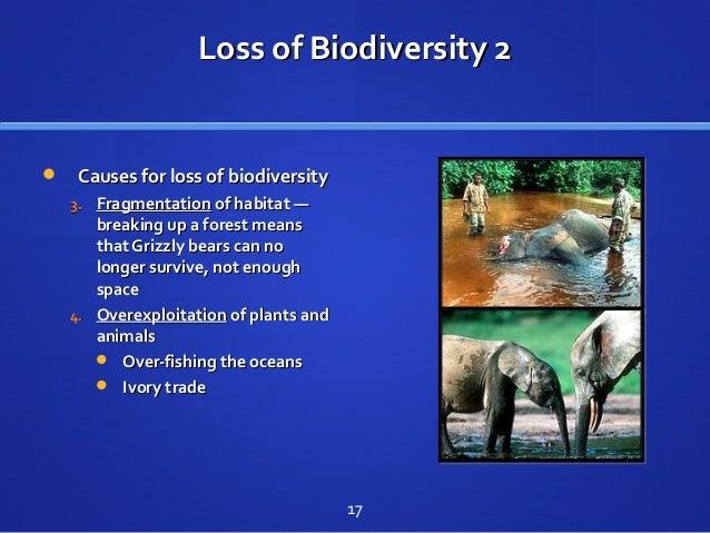 Loss of Biodiversity 2Loss of Biodiversity 2  Causes for loss of biodiversityCauses for loss of biodiversity 3.3. Fragmen...