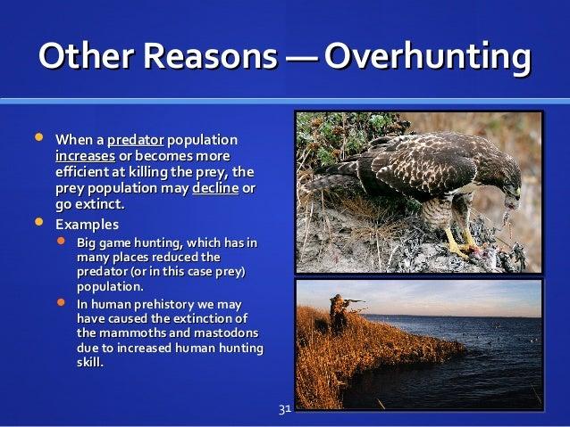 Other Reasons — OverhuntingOther Reasons — Overhunting  When aWhen a predatorpredator populationpopulation increasesincre...