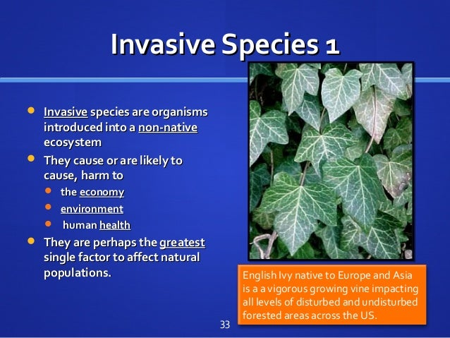 Invasive Species 1Invasive Species 1  InvasiveInvasive species are organismsspecies are organisms introduced into aintrod...
