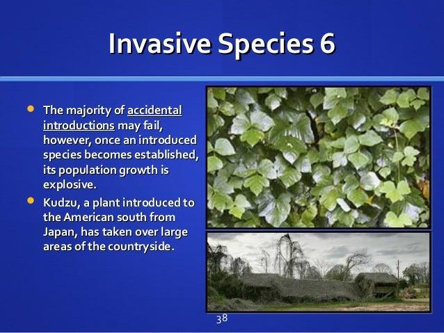 Invasive Species 6Invasive Species 6  The majority ofThe majority of accidentalaccidental introductionsintroductions may ...