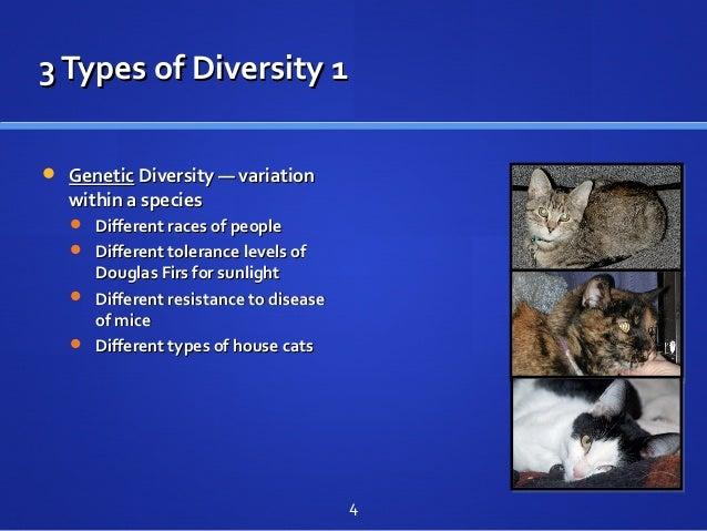 3Types of Diversity 13Types of Diversity 1  GeneticGenetic Diversity — variationDiversity — variation within a specieswit...