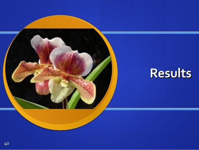 ResultsResults 40