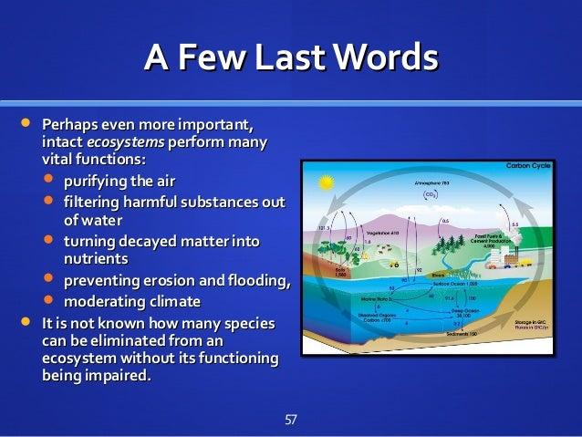 A Few Last WordsA Few Last Words  Perhaps even more important,Perhaps even more important, intactintact ecosystemsecosyst...