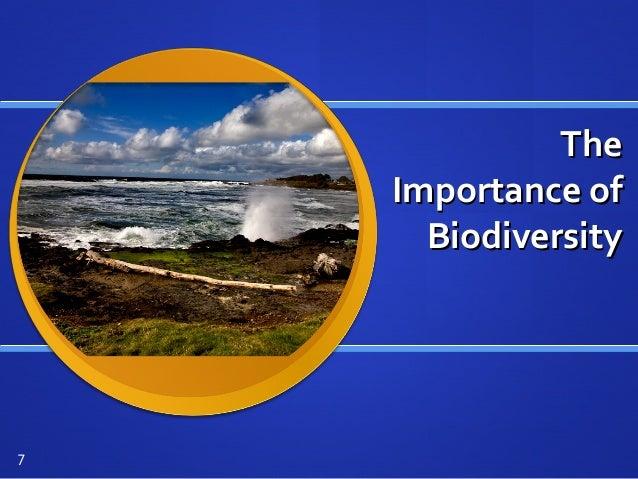 TheThe Importance ofImportance of BiodiversityBiodiversity 7
