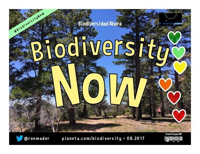 Biodiversidad Ahora @ r o n m a d e r p l a n e t a . c o m / b i o d i v e r s i t y • 0 8 . 2 0 1 7 Grand Canyon NP
